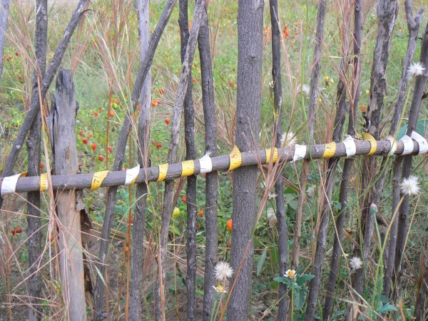 Repurposing a tape measure to tie a garden fence